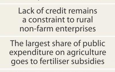 高付加価値農業を目指せ(後)
