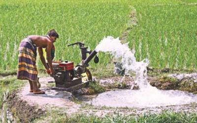 ボロ米栽培の節水技術(前)