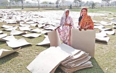 紙乾燥で生計を立てる未亡人