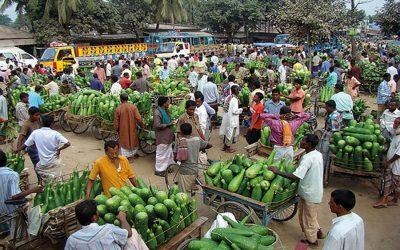 農村市場の設置を開始