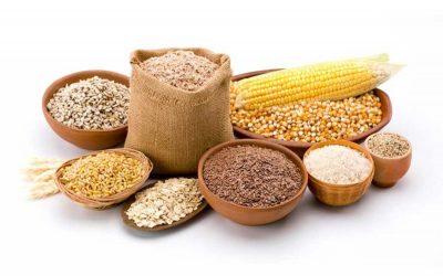 食料生産拡大に新研究所設立