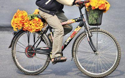 自転車の輸出成長を目指す