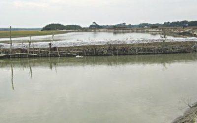 Kuakata運河はAL男の魚をゲッターに変えます