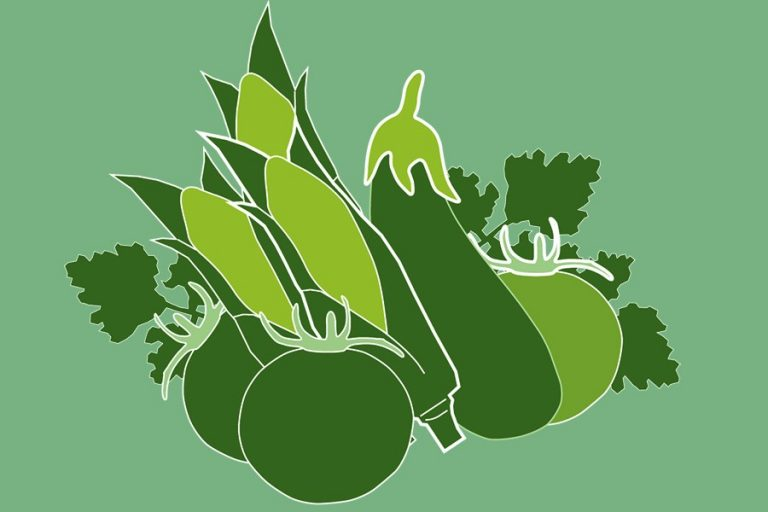 野菜輸出収入8,100万ドル