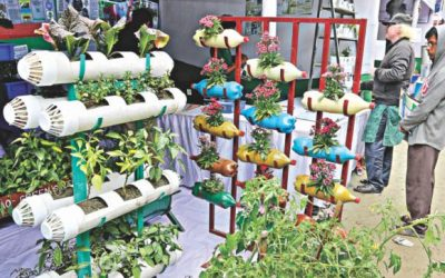 野菜生産ブーム