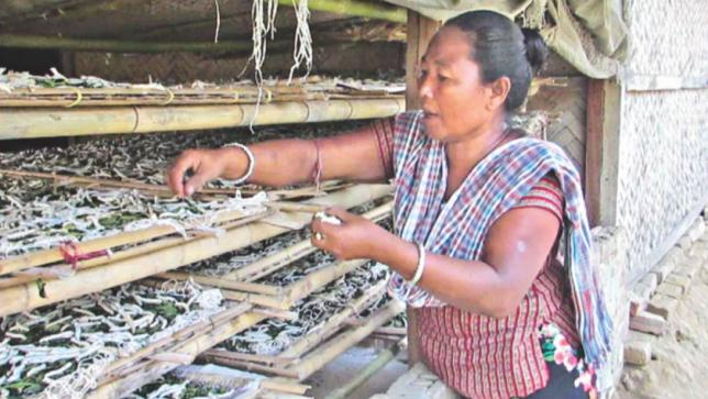 丘陵地帯で栄える絹産業