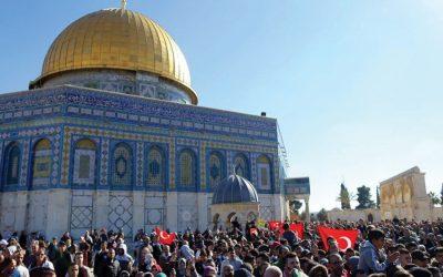 エルサレム、パレスチナ、国連