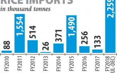 米の輸入は20年ぶりの高水準を記録