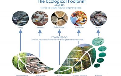 エコロジカルフットプリントの観点から見た都市の持続可能性