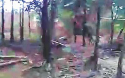 ロヒンギャ村の解体