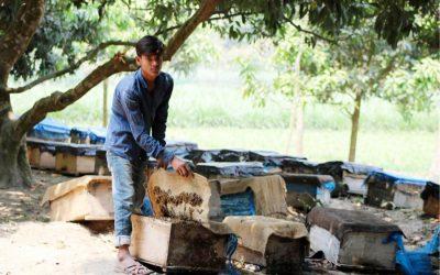 養蜂はN地域の農家に期待しています