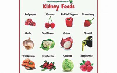 罹患腎臓に対する食事の影響