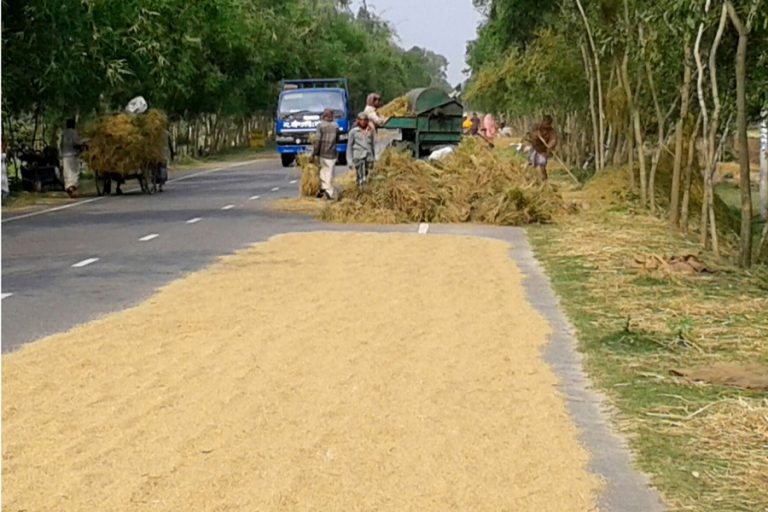 金属化された道路の農家を伐採する農民