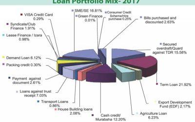 短期借入金、スタンダード・バンクのSMEスネア主要貸付ポートフォリオ