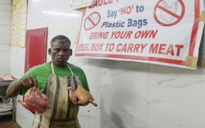 環境危機が深刻化するにつれて、世界がプラスチックに窒息する:国連