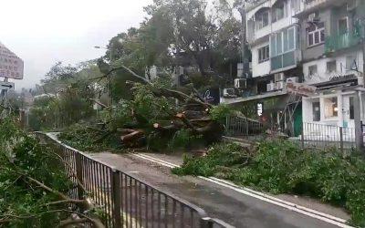 台風マンコート:数百万人が中国で避難した