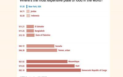 世界各地の食べ物の真価