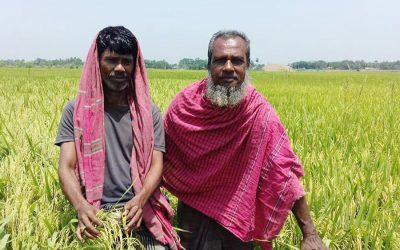 Sirajganj DAEはT-Aman収量0.2mトンを目指す