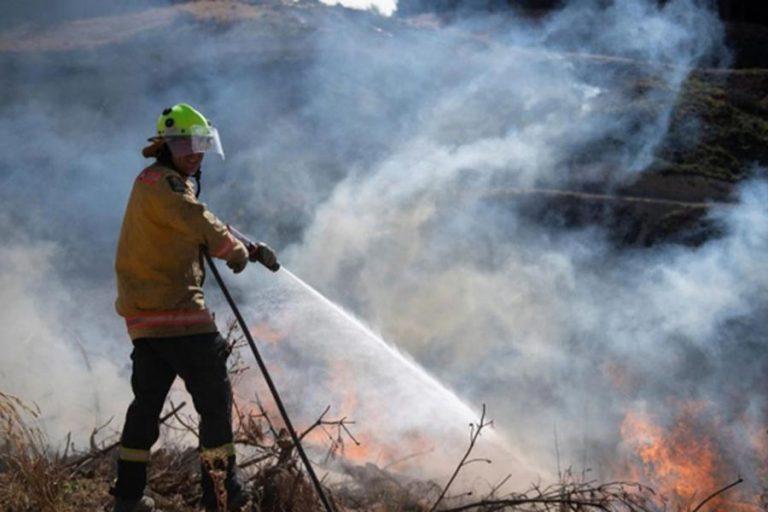 ニュージーランドの山火事は緩和の兆しを見せていない