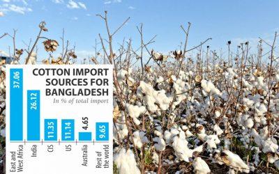 インド綿花への依存度減少