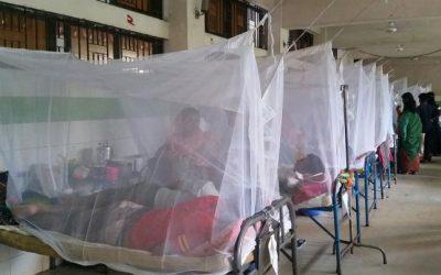 1日で1477人入院:デング熱