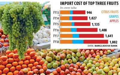 フルーツの輸入急増