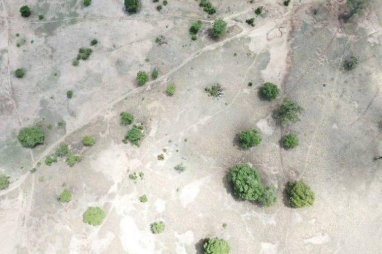 砂漠化と干ばつとの闘い