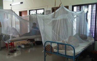 213人がデング熱で入院
