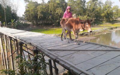 国境の人々は橋の不足のために何年も苦しんでいます