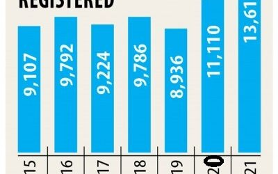 新会社の登録急増